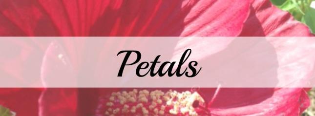 Petals cover